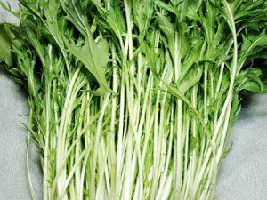 カブ付きの水菜